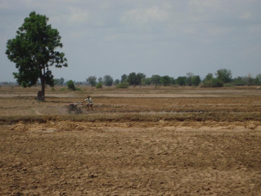 Campagne-Battambang