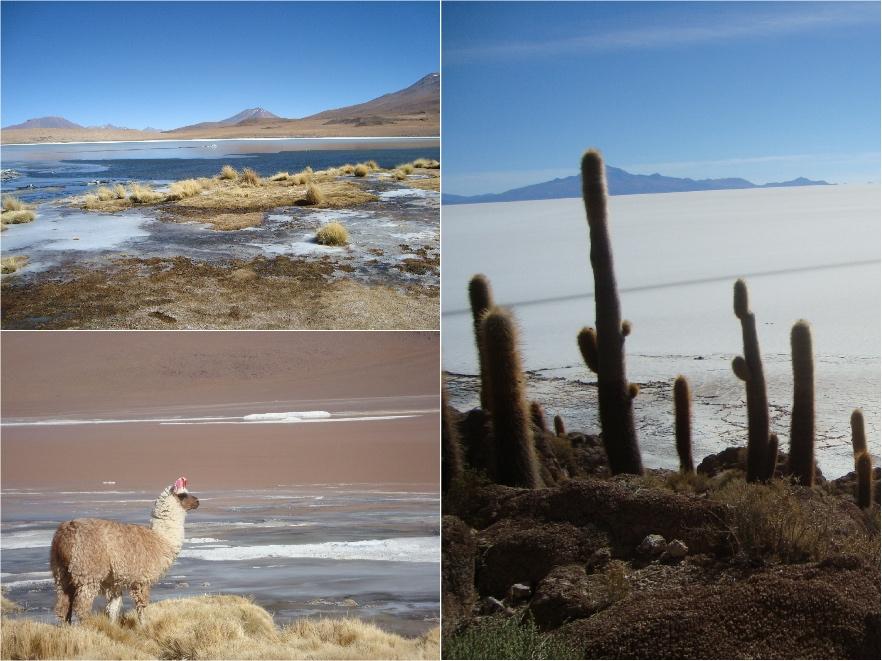 SudLipez-Salar-Bolivie